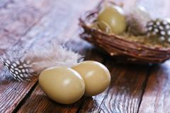 Eggs pheasant Stock Photos