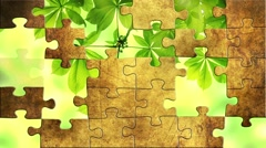 Green leaves puzzles Stock Footage
