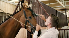 Young man combing a fetlock a mane horse Stock Footage