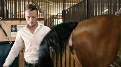Young man combing a horse tail Stock Footage
