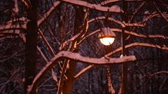 Round street lamp seen through tree branches under snow, dark time, winter night Stock Footage