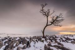 Twistleton Scar End in snow, Ingleton, Yorkshire Dales, Yorkshire, England, Stock Photos