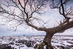 Twistleton Scar End in snow, Ingleton, Yorkshire Dales, Yorkshire, England, - stock photo