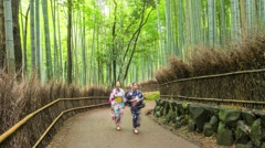 KYOTO, JAPAN: Bamboo Forest Stock Footage