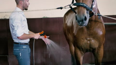 Young man cleaning the horse Stock Footage