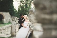 Happy wedding couple hugging and kissing on background old castle - stock photo