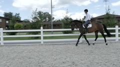 Young rider canter at the arena - stock footage