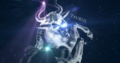 Taurus. Zodiac sign. Horoscope. Constellation the Bull. - stock footage