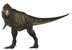 Tyrannosaurus Rex, a large carnivore of the Cretaceous Period. Stock Illustration