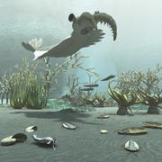 Animals and floral life from the Burgess Shale formation of the Cambrian period. Stock Illustration