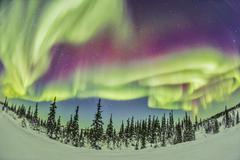 Aurora borealis over Churchill, Manitoba, Canada. Stock Photos