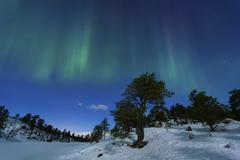 Aurora Borealis, Forramarka, Troms, Norway. Stock Photos