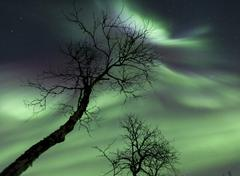 Northern Lights in the arctic wilderness, Nordland, Norway. Stock Photos