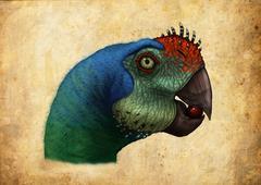 Oviraptor head detail. Stock Illustration