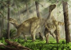 A pair of Iguanodon bernissartensis grazing. Stock Illustration