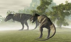 Two Tyrannosaurus Rex rest in the early morning light before the days hunt. - stock illustration