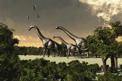 Brachiosaurus dinosaurs walk through a forested area. - stock illustration