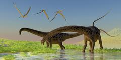 A flock of Pterosaur birds fly over two Diplodocus dinosaurs. Stock Illustration