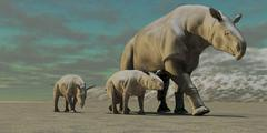 A Paraceratherium mother with two twin calves walks along a desert. Stock Illustration
