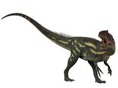 Allosaurus, a prehistoric era dinosaur. - stock illustration