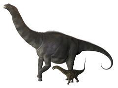 An Argentinosaurus and juvenile. Stock Illustration