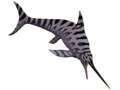 Eurhinosaurus, an extinct genus of ichthyosaur. Stock Illustration