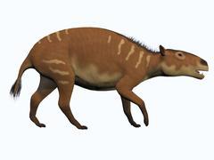 Eurohippus, an extinct ancestor of the modern horse. Stock Illustration