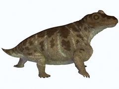 Keratocephalus, a semi-aquatic dinosaur from the Permian Age. Stock Illustration