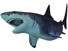 Megalodon shark, an enormous predator from the Cenozoic Era. - stock illustration