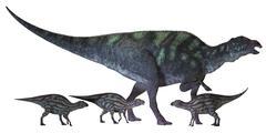 Maiasaura dinosaur with offspring. - stock illustration