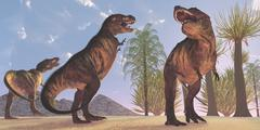Tyrannosaurus Rex dinosaurs have a growling session. Stock Illustration