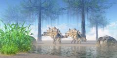A pair Stegosaurus walking near a pond on a Jurassic misty morning. Stock Illustration