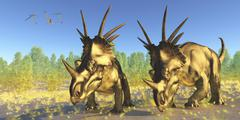 A flock of Pterodactylus fly above two Styracosaurus dinosaurs. Stock Illustration