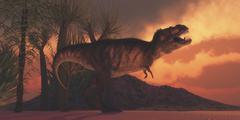 A Tyrannosaurus rex dinosaur roars to claim his territory. Stock Illustration