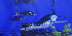 Liopleurodon catches an ichthyosaur in Jurassic seas. Stock Illustration