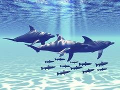 Three Bottlenose Dolphins swim with a group of reef fish. - stock illustration