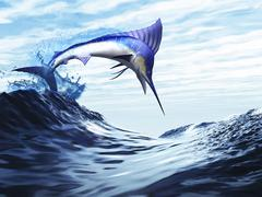 A beautiful blue marlin bursts through a wave in a spectacular jump. - stock illustration