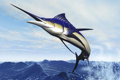 A sleek blue marlin bursts from the ocean surface in a grand leap. - stock illustration