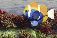 A colorful clownfish swims among the corals of an ocean reef. - stock illustration