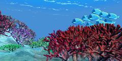 A school of iridescent Blue Tango fish. Stock Illustration