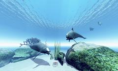 Two Bottlenose dolphins take interest in a crab on the ocean floor. Stock Illustration