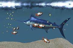 Small fish accompany a blue marlin in an ocean world habitat. Stock Illustration