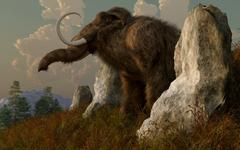 A mammoth standing among stones on a hillside. Stock Illustration