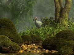 A Dodo bird hides in a dense jungle near a stream. - stock illustration