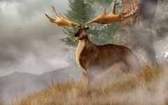 An Irish Elk stands in deep grass on a foggy hillside. Stock Illustration