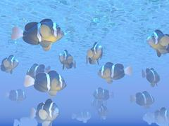 A school of clownfish swimming in the sea. Stock Illustration