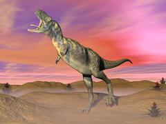 Aucasaurus dinosaur roaring in the desert by sunset. Stock Illustration