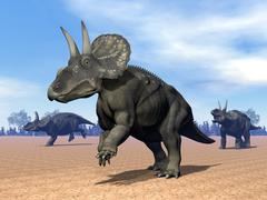Three Nedoceratops in the desert by daylight. Stock Illustration