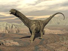 Large Argentinosaurus dinosaur walking on rocky terrain. Stock Illustration