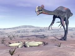 Female Gigantoraptor dinosaur walking to its nest full of eggs. Stock Illustration